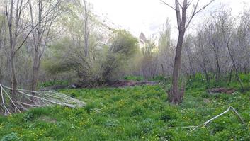 باغجه در شهرستانک